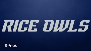 Rice Owls Gray